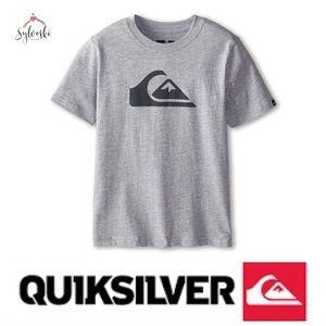🆕 Quiksilver Everyday Logo Core Tee